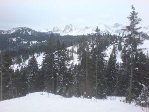 Gantrischkette-Skilift-Selital
