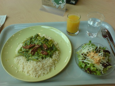 Gemüsecurry mit Kokosmilch, Erbsen, Kefen, Brokkoli und Spinat; Faire Trade Basmati Reis Menüsalat mit Kohlrabi und gerösteten Kürbiskernen und/oder Sonnenblumenkernen