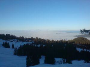 Langlauf Gurnigel Sicht Nebelmeer Selital