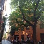 """Wochenende in Stockholm - Restaurant """"Under Kastanjen"""" in der Altstadt von Stockholm"""