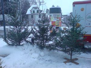 weihnachtsbaum mieten komfortabel aber auch umweltfreundlich jenk. Black Bedroom Furniture Sets. Home Design Ideas